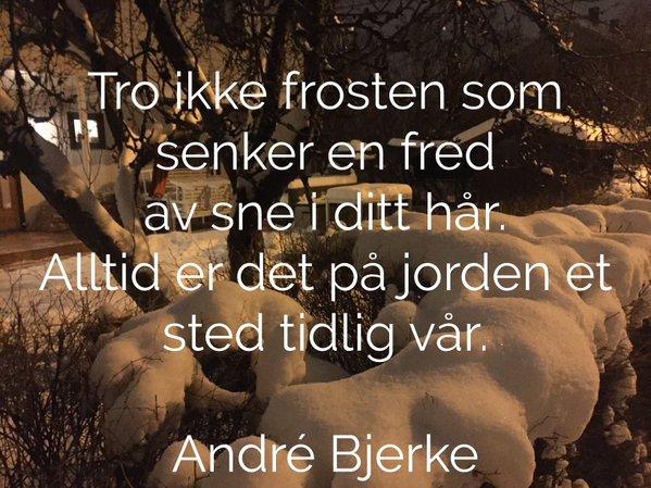 Andre Bjerke